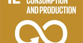 Part IV - Goal 12: responsible consumption and production. What changes can you make?