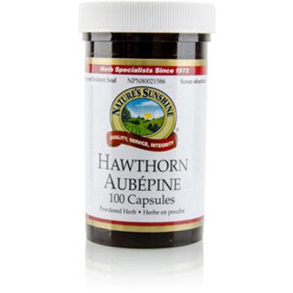Hawthorn (100 Capsules)