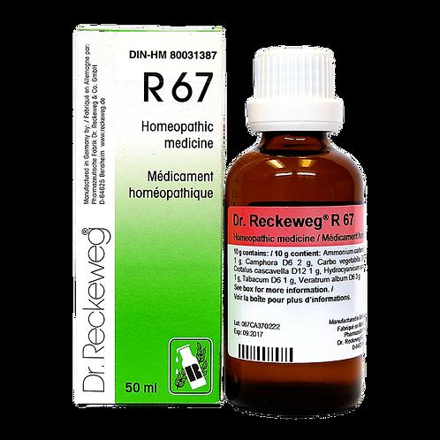 R67 (50ml)