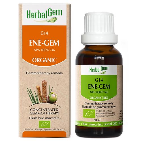 G14 | ENE-GEM (50ml)