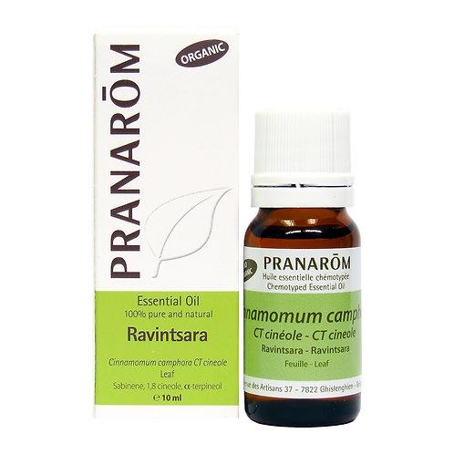 Ravintsara Essential Oil - 15ml