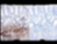 normal pyloric epthielium