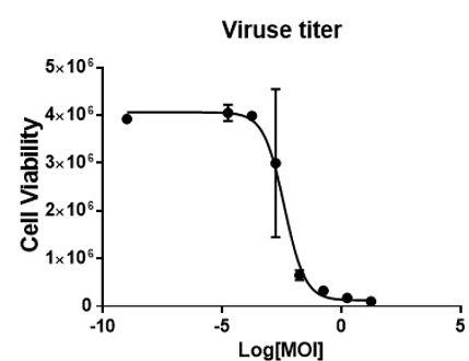 virus titer.jpg