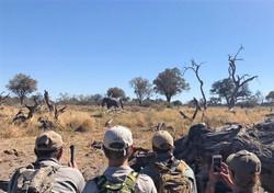 Mentorship Trails Botswana