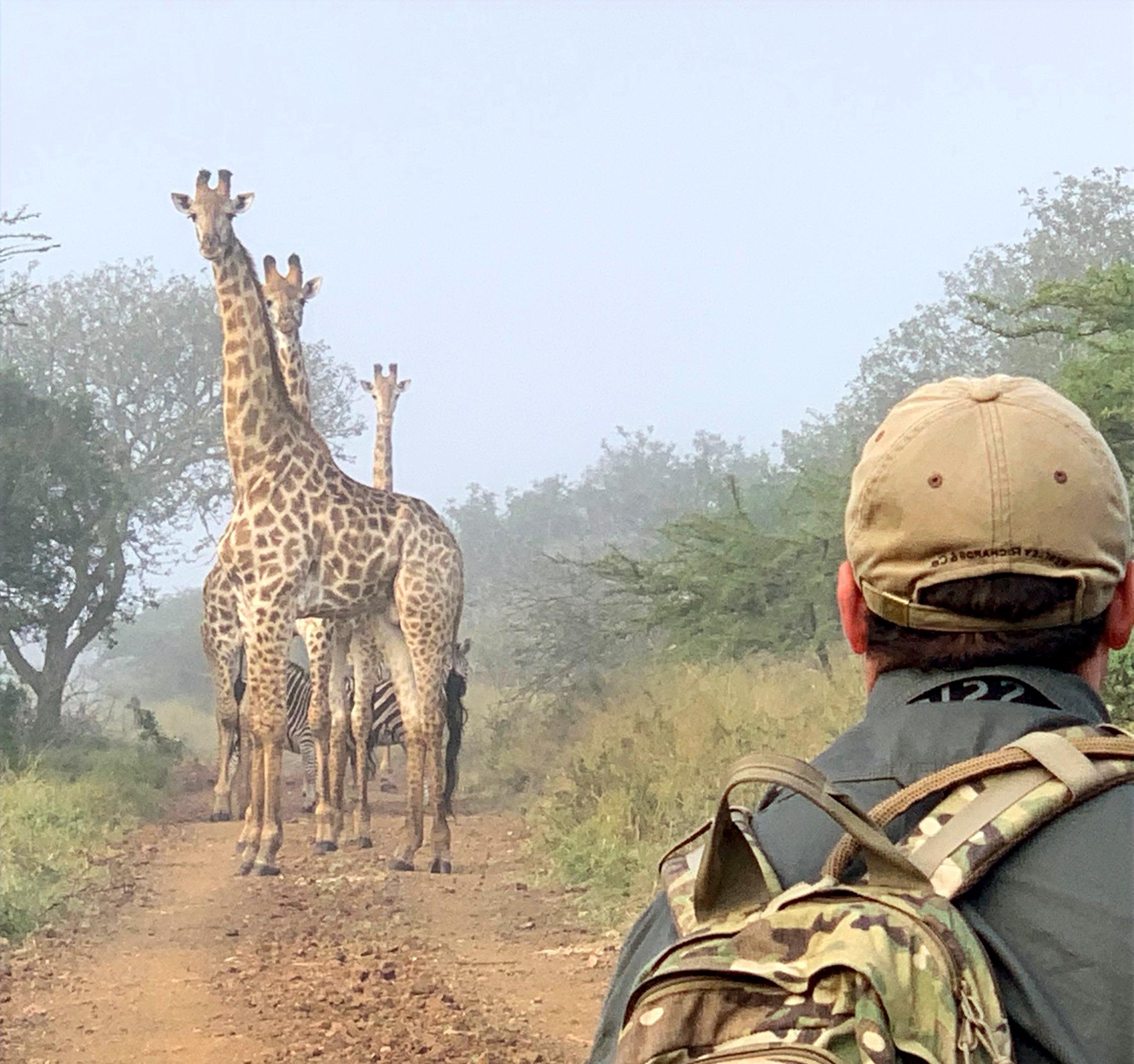 Sighting_Giraffe_Bayala
