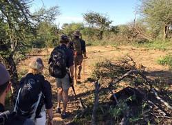Lead Trails 1st rifle
