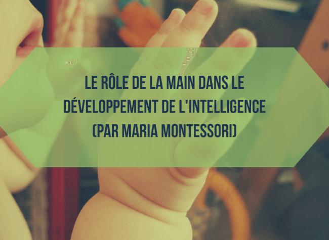 Le rôle de la main dans le développement de l'intelligence