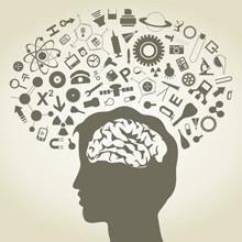 Neurosciences et pédagogie | Thot Cursus