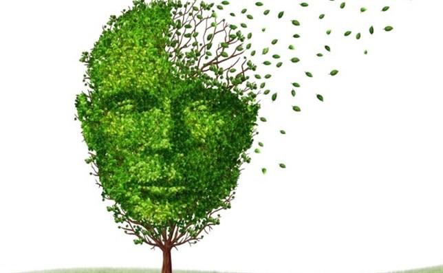 El Alzheimer puede empezar a desarollarse a los 30 años