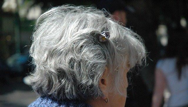 Especial Alzheimer / Special Alzheimer