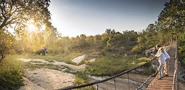 Luxury Lodge in the Sabi Sand Game Reserve