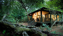 A one-of-a-kind eco-lodge situated set within a rare and beautiful sand forest in the &Beyond Phinda Reserve.