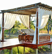 Safari Plains 2.jpeg