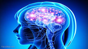 Черепно-мозговая травма снижает выработку гормонов, нарушая сон, когнитивные функции и память