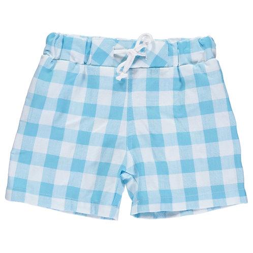 DOT Pedro Swim Shorts Turquoise Check Stripes