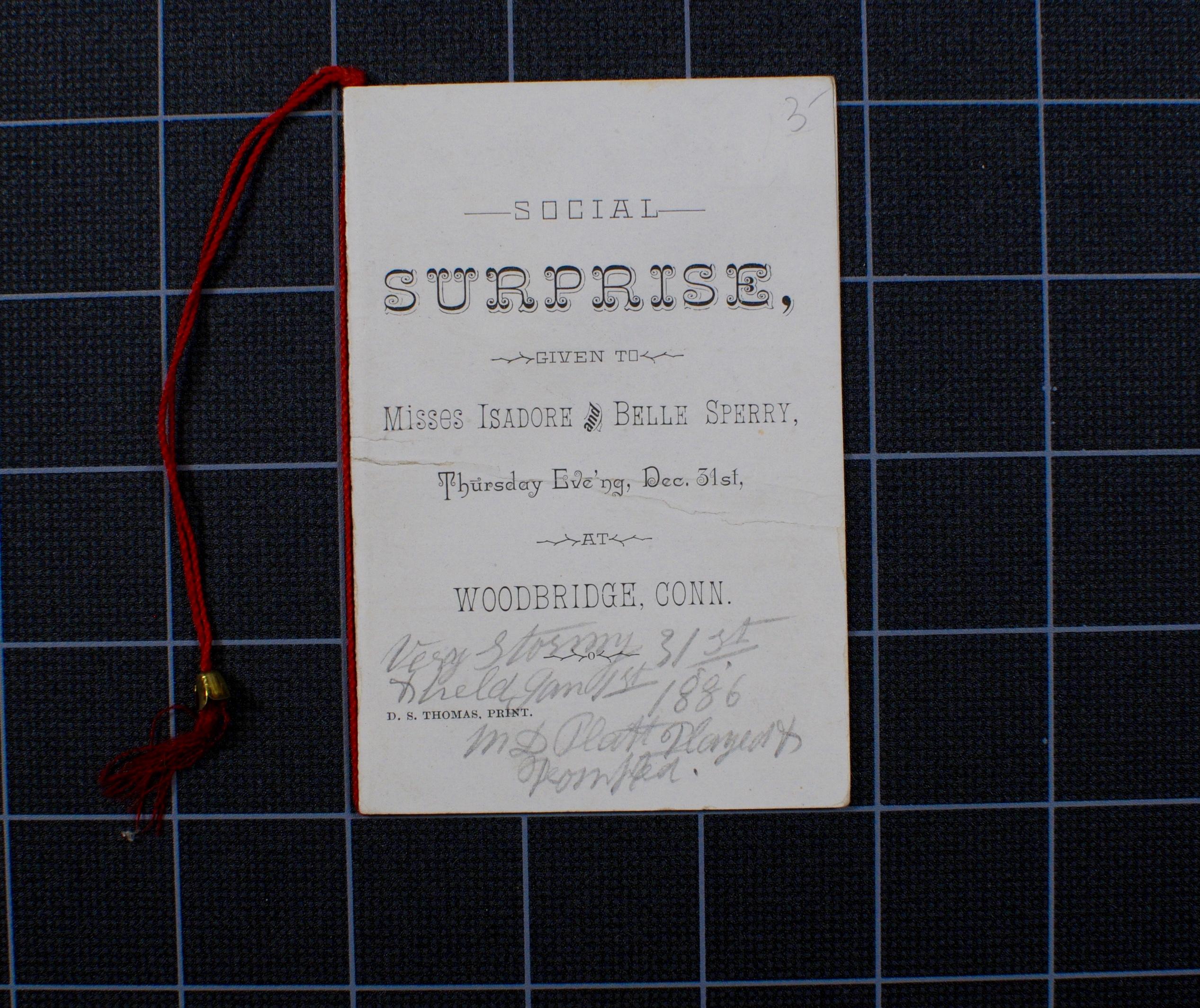 Social Surprise (1886)