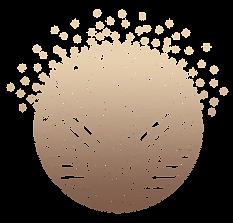logo reder.png