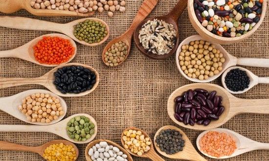 Les bienfaits des protéines végétales
