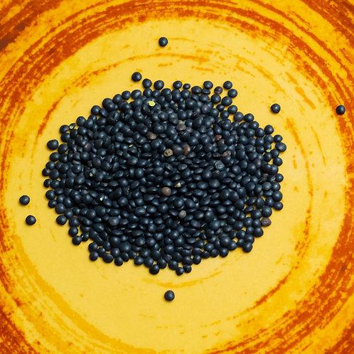 Lentilles noir bio