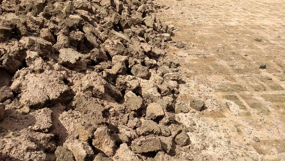 lodo de esgoto, destinação de lodo, disposição final, lodo para aterro