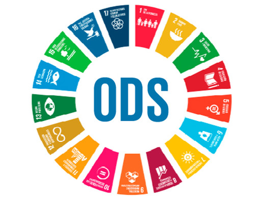 Wetlands construídos e os ODS: o futuro do saneamento
