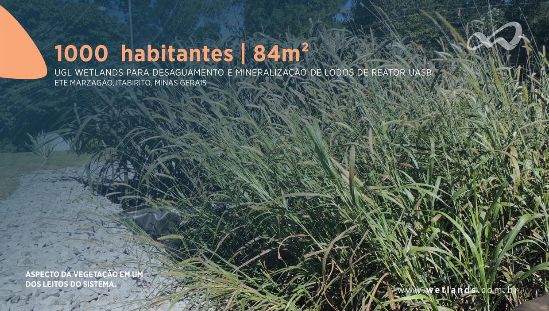 Portfólio | Wetlands Construídos