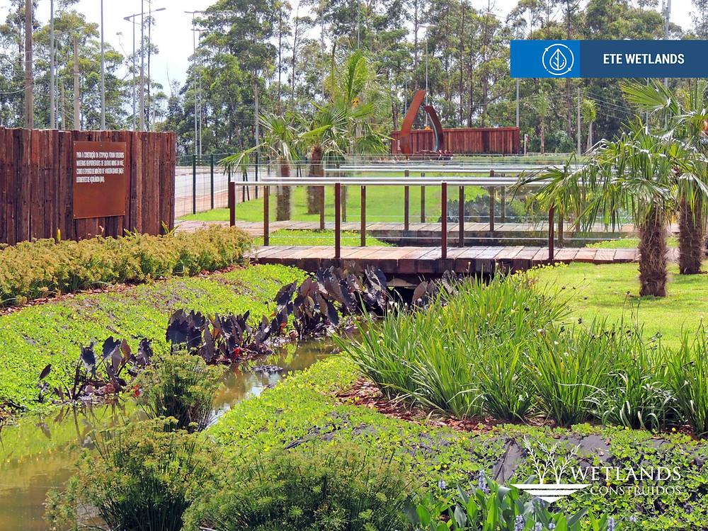 wetlands construídos, ETE wetlands, tratamento efluentes sanitários, tratamento esgotos, saneamento municipal, efluente sanitário industrial, sustentabilidade, marketing ambiental, ETE sustentável