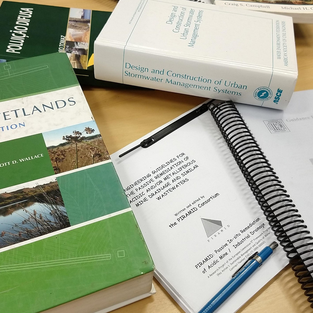 critérios de engenharia wetlands construídos