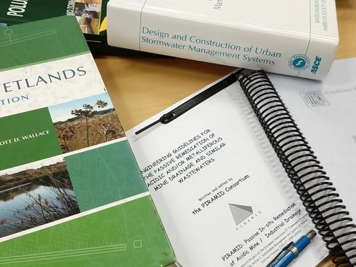 Desmistificando os wetlands construídos