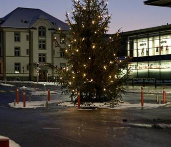 csm_Weihnachtsbaum_4_800_d3da1ffb4d.jpg
