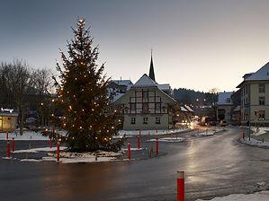 Weihnachtsbaum_2_800.jpg