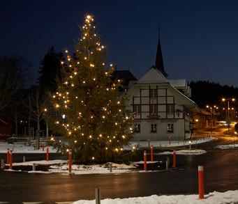 Weihnachtsbaum_1_800.jpg