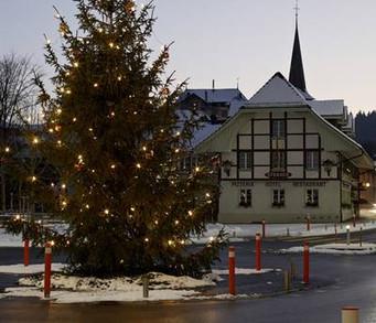 csm_Weihnachtsbaum_3_800_571419ee1a.jpg