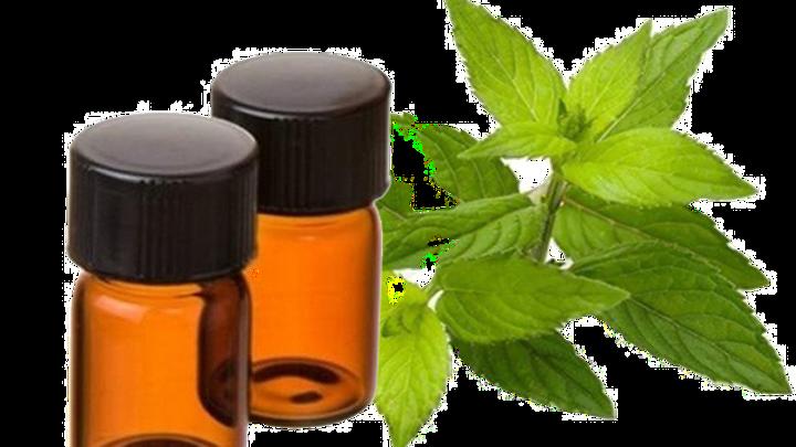 huile essentielle de menthe poivrée bio