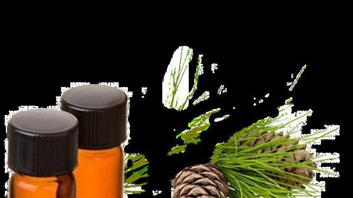 huile essentielle de cèdre d'atlas bio