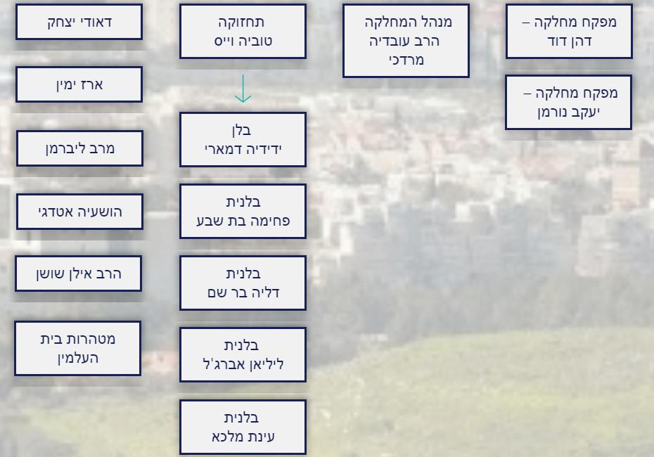 מועצה דתי ורבנות כרמיאל - מבנה ארגוני