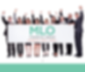 MLO home page banner.PNG