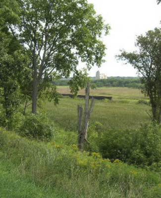 Forest Preserve District of Will County  375 Acres of Wooded Land - Phase I Environmental Site Assessment