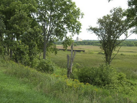 Forest Preserve 375 Acres of Wooded Land