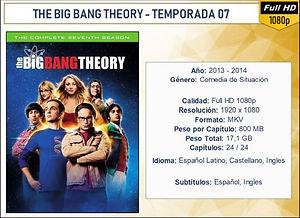 THE BIG BANG THEORY - TEMPORADA 01.jpg