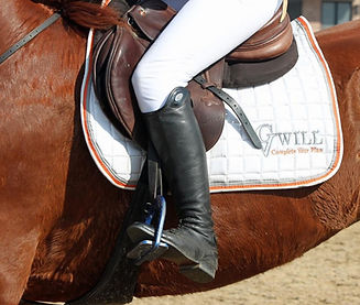 equestrian photo_edited.jpg