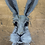Thumbnail: White Rabbit