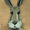 Thumbnail: Brown Rabbit