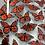 Thumbnail: Monarch Butterflies