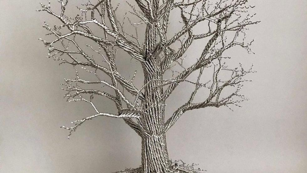 Winter oak on spalted beach base
