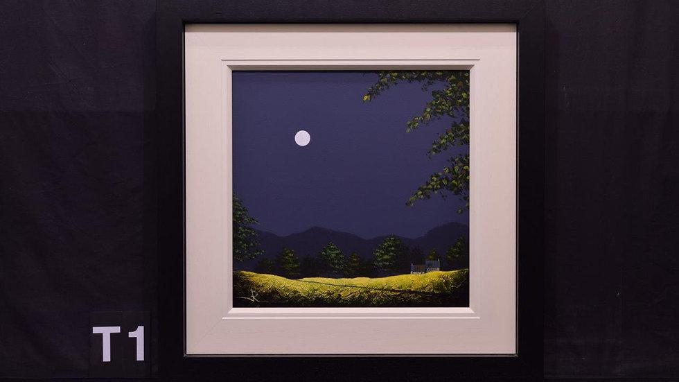Moonlight fields
