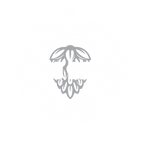 BCH 2020 Logo - white.png