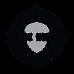 BCH 2020 Logo - black.png