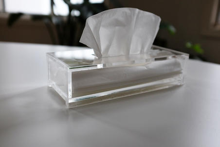Project - Clear Tissue Box