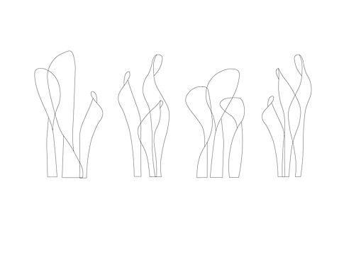 CC grouped-10.jpg